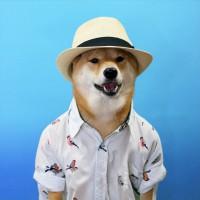 menswear dog sombrero verano nuñez de arenas